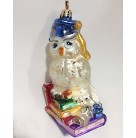 Who Knows More? - Graduation Owl, Christopher Radko Christmas Ornament, 2003, 3016236, Mortar, books,, Mint with Tag